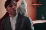 "Dirty Projectors – ""Break-Thru"" Video"