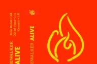 Stream Firewalker <em>Alive</em> EP