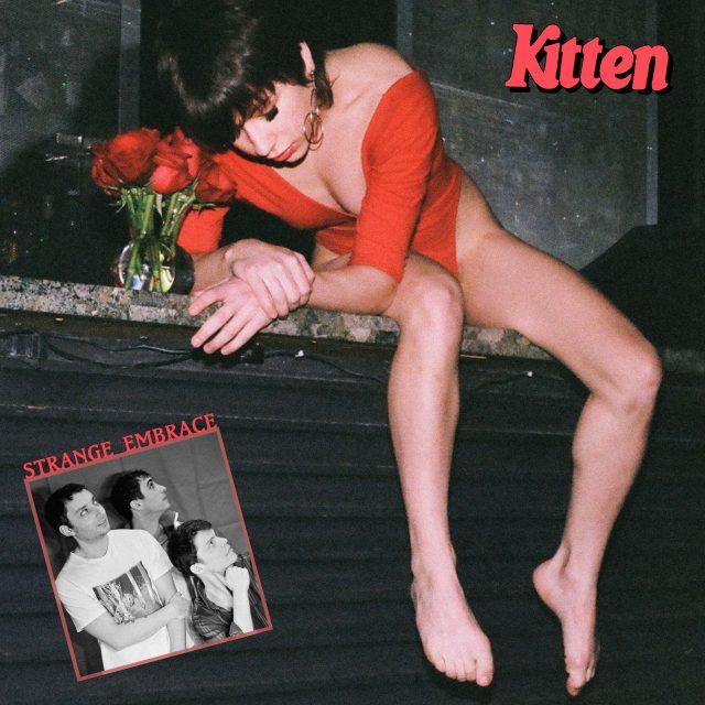 Kitten-Strange-Embrace