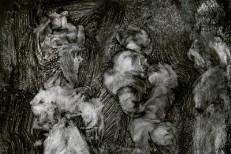 Mark-Lanegan-and-Duke-Garwood-With-Animals