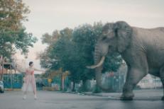 """Seasonal Beast - """"I Can Make You Disappear"""" Video"""
