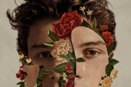 Comparing Shawn Mendes And James Bay, Guitar-Slinging Gods Of Young Adult Contempo