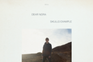 Stream Dear Nora&#8217;s <em>Skulls Example</em>