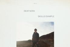 Dear Nora Skulls Example