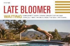 Late Bloomer 'Waiting' Album Art