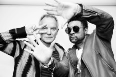 Sting & Shaggy Stereogum Session