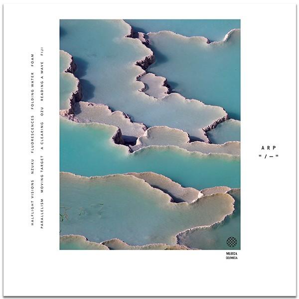 Arp-Zebra-Cover-Art