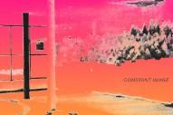 Album Of The Week: Flasher <em>Constant Image</em>