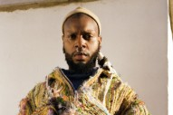 "serpentwithfeet – ""seedless"""