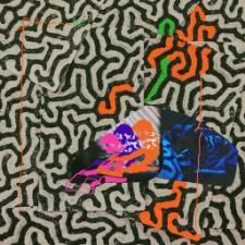New Animal Collective Album, Video