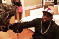 Here Is Big Boi Training His Owl Hootie To Perch On His Arm