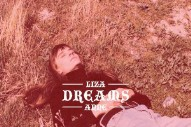 "Liza Anne – ""Dreams"" (The Cranberries Cover)"