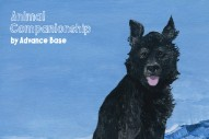 Album Of The Week: Advance Base <em>Animal Companionship</em>