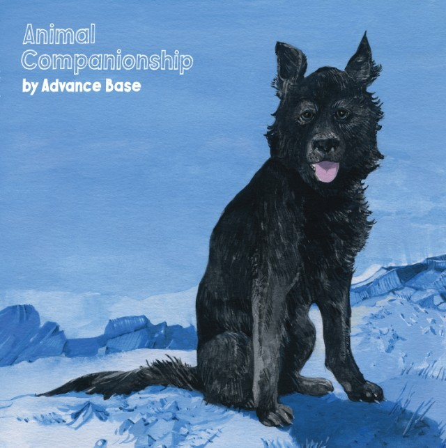 Advance-Base-Animal-Companionship