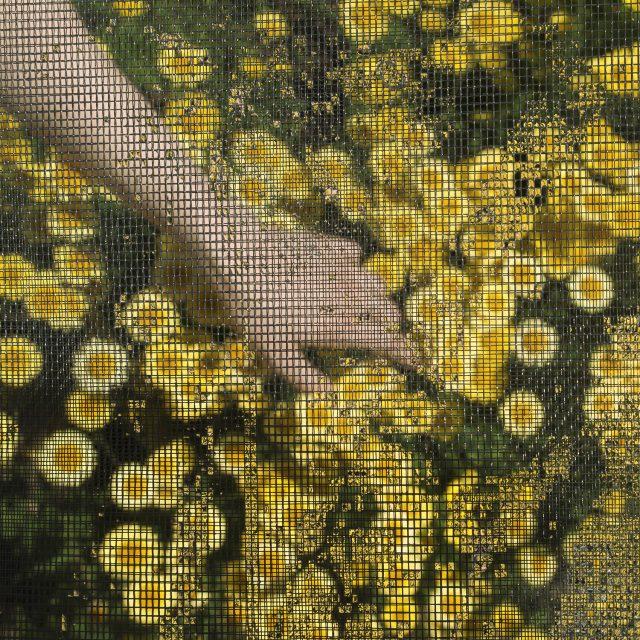 Charly-Bliss-Heaven-Single-Artwork-1537324140