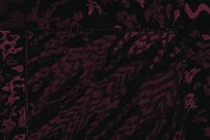 Fluisteraars/Turia - De Oord Split