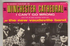 The-New-Vaudeville-Band-Winchester-Cathedral