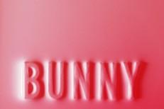 Matthew-Dear-Bunny
