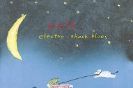 <i>Electro-Shock Blues</i> Turns 20