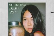 "SASAMI – ""Not The Time"""