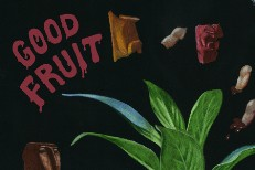 TEEN-Good-Fruit-Album-Art-1543357641