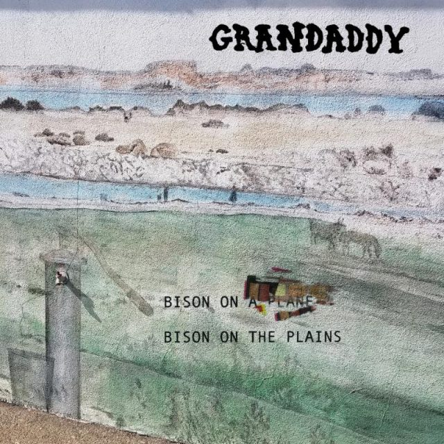 Bison on the Plains Grandaddy