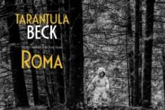 Beck-Tarantula
