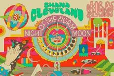 Shana Cleveland
