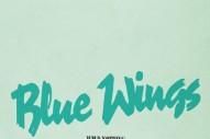 "Wild Nothing – ""Blue Wings"""