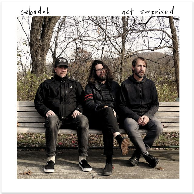 Sebadoh - Act Surprised