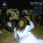 SPELLLING-Mazy-Fly