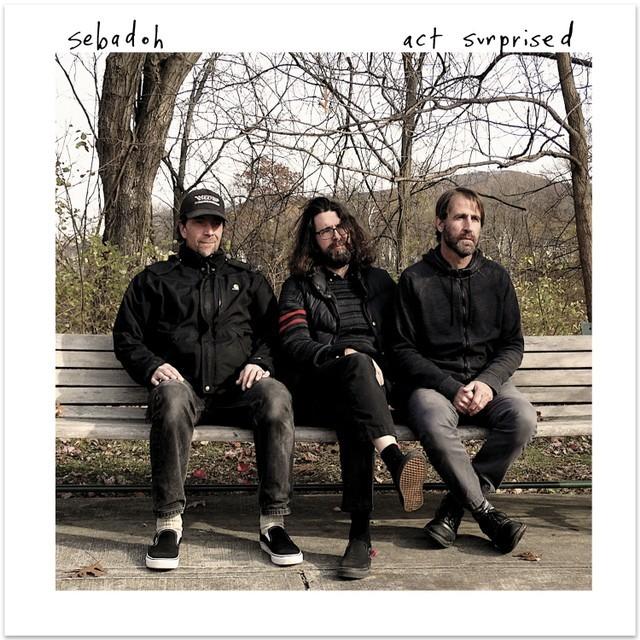 Sebadoh_Act-Surprised_Album-Cover-1551389761-640x640-1553800244