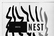 Album Of The Week: Brutus <i>Nest</i>