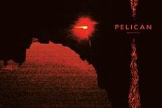 pelican-nighttime-stories-1554995811