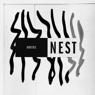 Brutus - Nest