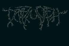 """Dark Morph - """"Beka Yalo"""""""