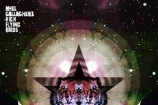 Noel-Gallaghers-High-Flying-Birds-Black-Star-Dancing-1556804518-640x6401-1559261966