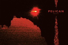 Pelican-Nighttime-Stories