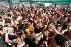 Firefly-crowd