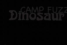 Camp Fuzz