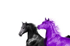 """Lil Nas X - """"Seoul Town Road"""" (Old Town Road Remix) (Feat. RM Of BTS)"""