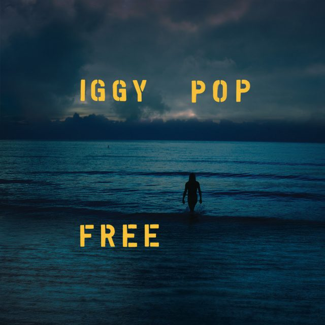 Image result for iggy pop free album cover
