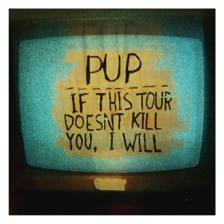 pup-if-this-tour-doesnt-kill-you-1571865025