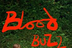"SOAK - ""Bloodbuzz Ohio"" (The National Cover)"