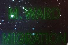 M-Ward-Migration-Stories