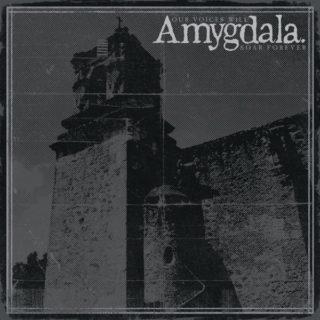 amygdala-voices-will-soar-forever-1576094106