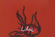 porridge-radio-lilac-1575485012