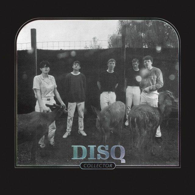 Disq-Collector