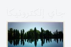 jay-electronica-a-written-testimony-1584054088