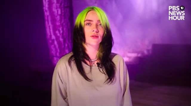 Billie Eilish at the DNC